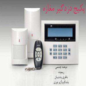 Burglar-Alarm-System-1